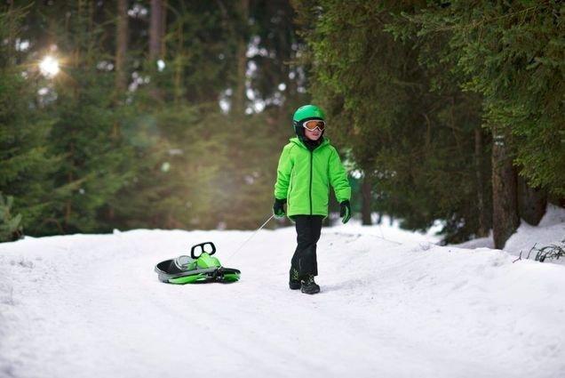 Санки-снегокат Gismo Riders Stratos (Чехия) (руль, трос, тормоз)